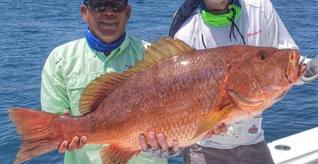 Zanc-Costa-Rica-Cubera-Snapper